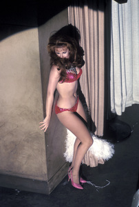 """""""The Swinger""""Ann-Margret1966 Paramount PicturesPhoto by Mel Traxel - Image 9032_0015"""