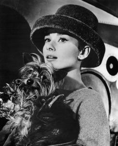 """Funny Face"" Audrey Hepburn 1956 Paramount **I.V. - Image 9111_0379"