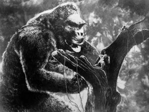 """""""King Kong""""Fay Wray1933 RKO**I.V. - Image 9162_0014"""