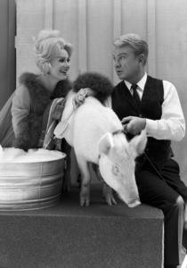 """Green Acres""Eva Gabor, Arnold the Pig, Eddie Albert1965 © 1978 John Engstead - Image 9271_0027"