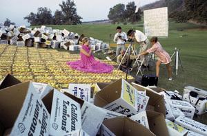 """Sunkist Advertisement""Photographer Sid Avery, Hal Silverman, Gabriel Von Caars1967© 1978 Sid Avery - Image 9277_0180"