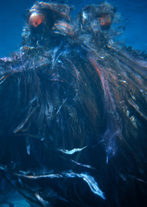 """ Voyage to the Bottom of the Sea""Monster (undersea creature)c. 1964 © Irwin Allen Properties, LLC and Twentieth Century Fox Film Corporation. All rights reserved - Image 9298_0062"