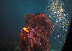""""""" Voyage to the Bottom of the Sea""""Monster (undersea creature) and the flying Submarinec. 1964 © Irwin Allen Properties, LLC and Twentieth Century Fox Film Corporation. All rights reserved - Image 9298_0063"""