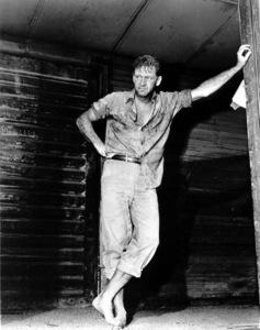 """Bridge on the River Kwai, The""William Holden on the set.1957 Columbia / **I.V. - Image 9427_0005"