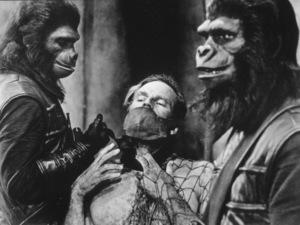 """Planet Of The Apes""Charlton Heston © 1968 20th Century Fox - Image 9436_0038"