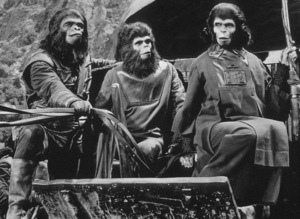 """""""Planet Of The Apes""""Lou Wagner and Kim Hunter © 1968 20th Century Fox - Image 9436_0042"""