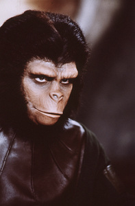 """""""Planet Of The Apes""""Roddy McDowall1968 20th Century Fox**I.V. - Image 9436_0046"""