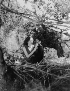 """""""Tarzan the Ape Man""""Maureen O"""