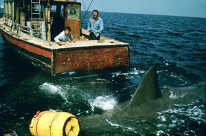 """Jaws""Richard Dreyfuss, Robert Shaw1975 Universal Pictures - Image 9575_0044"