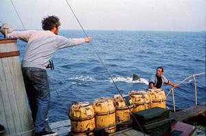 """""""Jaws""""Richard Dreyfuss, Roy Scheider1975 Universal Pictures - Image 9575_0051"""