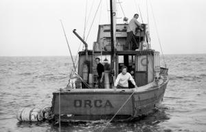 """Jaws""Roy Scheider, Robert Shaw, Richard Dreyfuss1975** I.V. - Image 9575_0209"