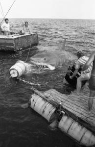 """Jaws""Richard Dreyfuss, Robert Shaw1975** I.V. - Image 9575_0211"