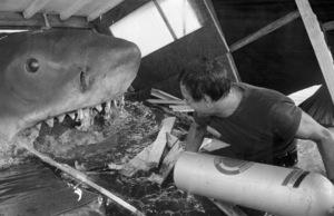 """""""Jaws""""Roy Scheider1975** I.V. - Image 9575_0215"""
