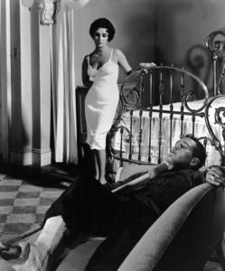 """Cat on a Hot Tin Roof""Elizabeth Tayor, Paul Newman1958 MGM* * R. C.  - Image 9605_0006"