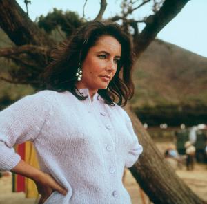 """Sandpiper""Elizabeth Taylor on location1965 MGM © 1978 Bernie AbramsonMPTV - Image 9620_0009"