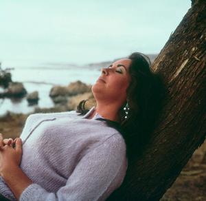 """Sandpiper""Elizabeth Taylor on location1965 MGM © 1978 Bernie AbramsonMPTV - Image 9620_0010"