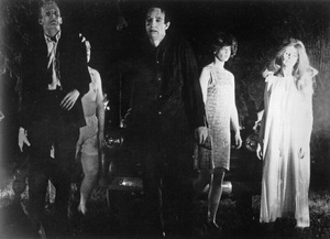 """""""Night of the Living Dead""""1968 Image Ten - Image 9672_0003"""