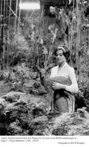 """Green Mansions""Audrey Hepburn1958 / MGM(c) 1978 Bob Willoughby - Image 9687_0100"