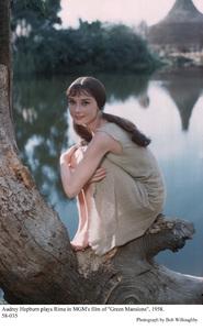 """Green Mansions""Audrey Hepburn1958 / MGM(c) 1978 Bob Willoughby - Image 9687_0126"