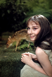 """Green Mansions""Audrey Hepburn and her deer Pippin1958 MGM© 1978 Bob Willoughby - Image 9687_0131"