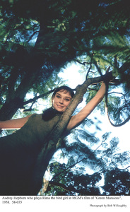 """Green Mansions""Audrey Hepburn1958 / MGM(c) 1978 Bob Willoughby - Image 9687_0132"