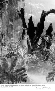 """Green Mansions""Audrey Hepburn1958 / MGM(c) 1978 Bob Willoughby - Image 9687_0135"