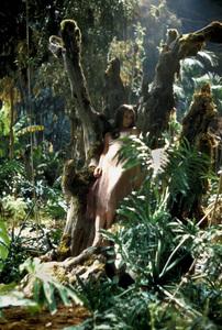 """Green Mansions""Audrey Hepburn 1958 MGM © 1978 Bob Willoughby - Image 9687_0201"