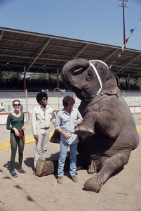 """Mod Squad""Peggy Lipton, Clarence Williams III, Michael Cole1971© 1978 Gene Trindl - Image 9731_0064"