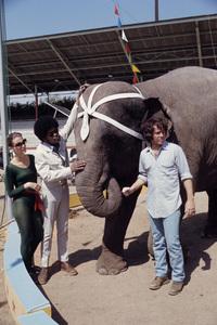 """Mod Squad""Peggy Lipton, Clarence Williams III, Michael Cole1971© 1978 Gene Trindl - Image 9731_0069"