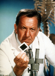 """Quincy M.E.""Jack Klugman1976 NBCPhoto by Herb BallMPTV - Image 9769_0013"