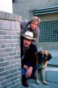 """Simon & Simon""Jameson Parker, Gerald McRaney1981 CBS © 1981 Gene TrindlMPTV - Image 9827_0011"