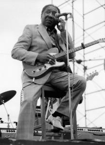 Muddy Waters, Capital Radio Jazz Festival, London1979Photo by Brian Foskett © National Jazz Archive - Image FOS_00937
